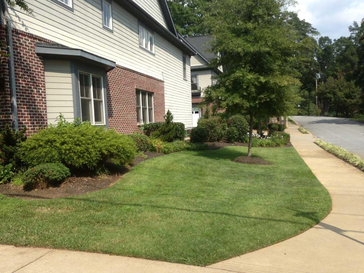 Multi Family Living Full Service Commercial Landscape