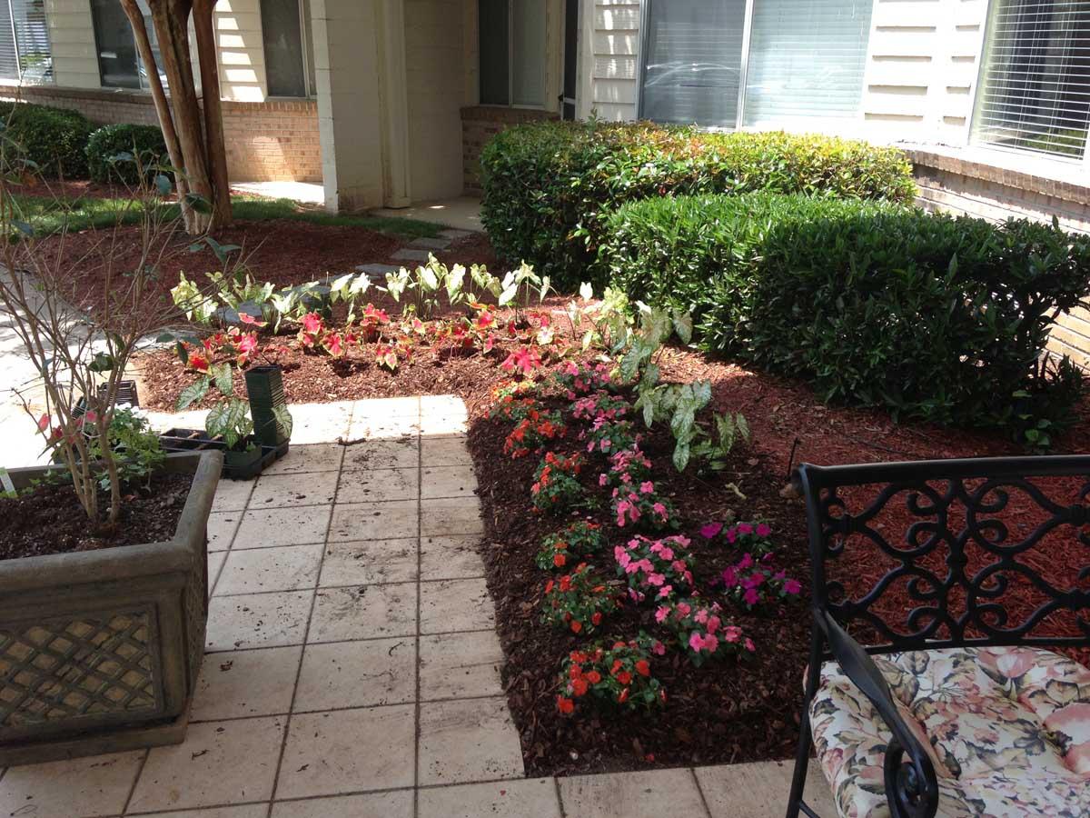 Early Planting (Seasonal Color)